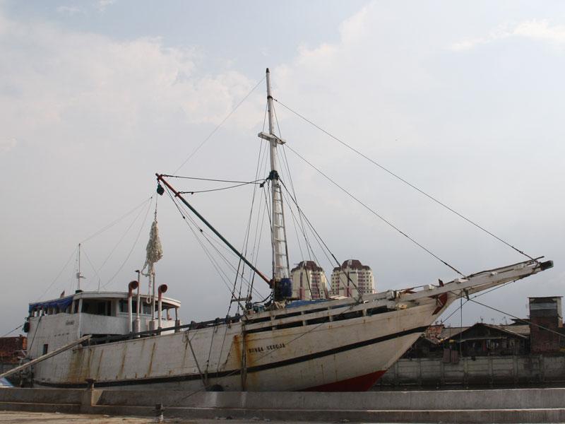 730schiff.jpg
